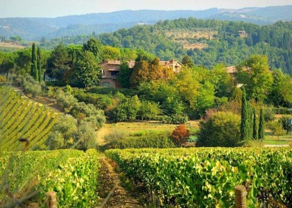 chianti tourist information