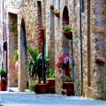 San Donato in Poggio in Chianti