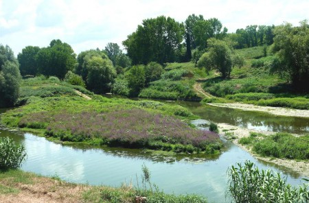 The Greve river near its entry in to the Arno.