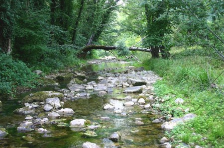 The Greve river as it enters flatter terrain