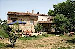 Two apartments for 2 to 5 persons in the quiet countryside of Chianti, Tuscany