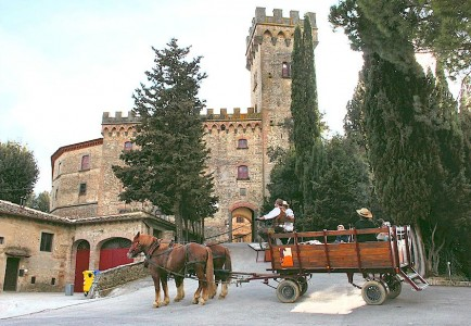 Horse drawn wagon tours in Chianti